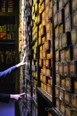 In the last room the walls were lined with wand boxes from every character in all the books. What a
