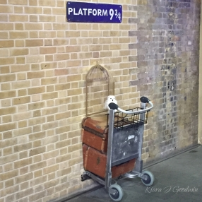 We made it to King's Cross station to see Platform 9 3/4, but the line was way to long to wait {not pictured: the hundreds of HP fans queuing up}.