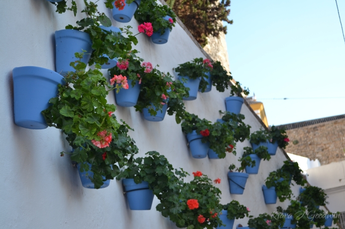 Blue pots and flowers grace the city walls.